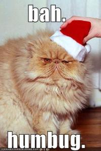 funny-pictures-bah-humbug-cat